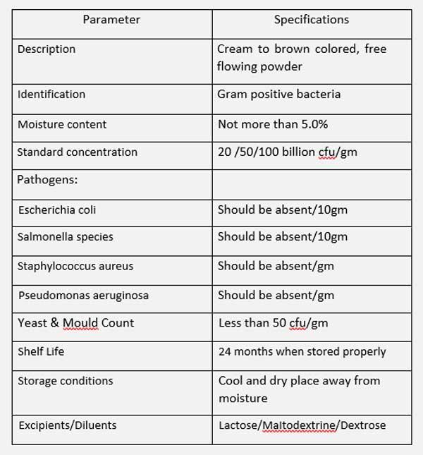 Lactobacillus-gasseri