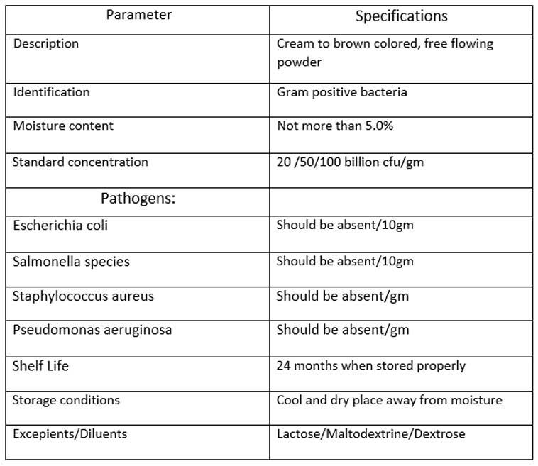 propionibacterium-freudenreichi